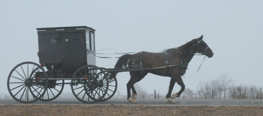 shipshewana dating The amish lifestyle simplicity, a way of life — a faith that dictates foregoing modern amenities, including electricity, automobiles and telephones, guides the amish this simple way of life is derived from teachings in the bible and the amish desire for an autonomous community.
